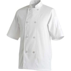 Basic Chefs Jackts - Short